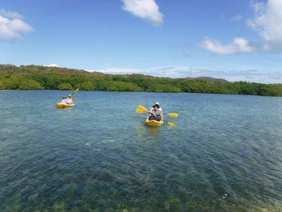 โรดทาวน์, Tortola: Serene sailing