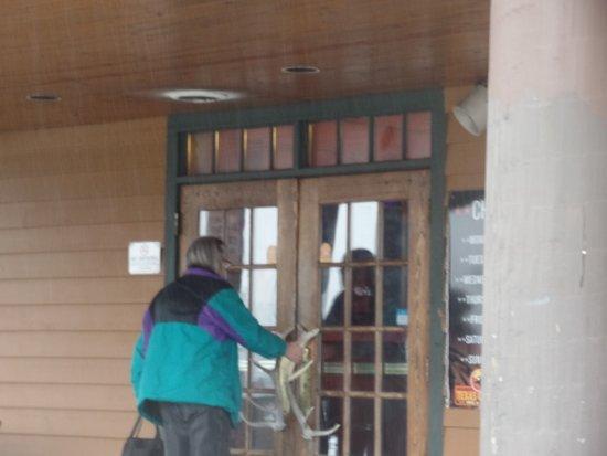 Benton Harbor, MI: Notice the steer horn door handles.
