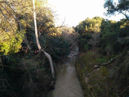 Mountain View, CA: Stevens Creek