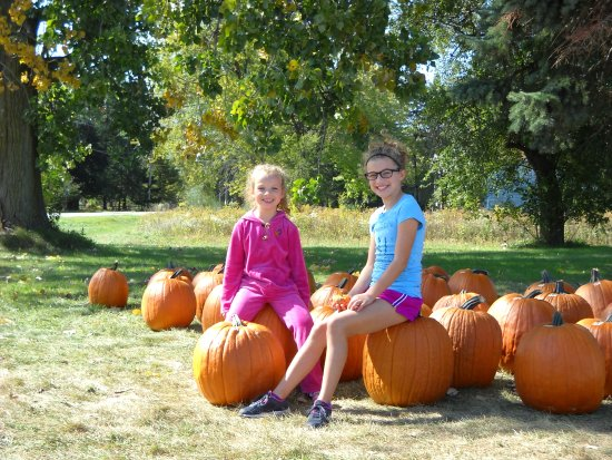 Racine, Висконсин: A couple of  young customers poising with our pumpkins
