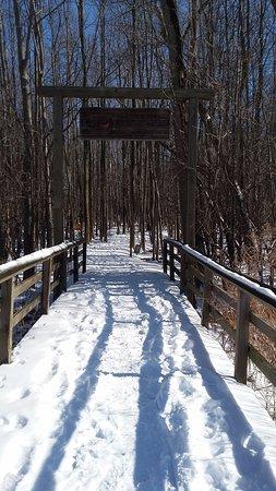 Henrietta, NY: Entrance to the woods...