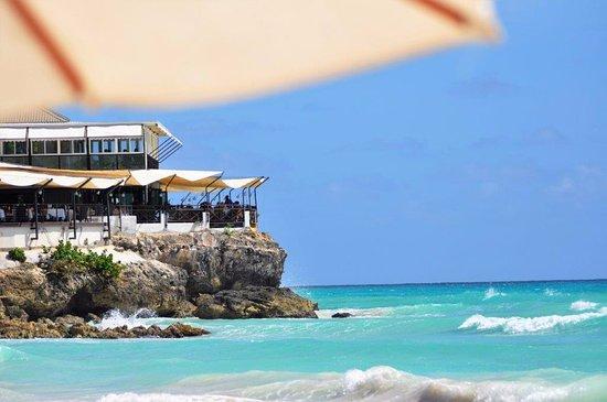 Крист-Черч, Барбадос: Veduta da sotto l'ombrellone