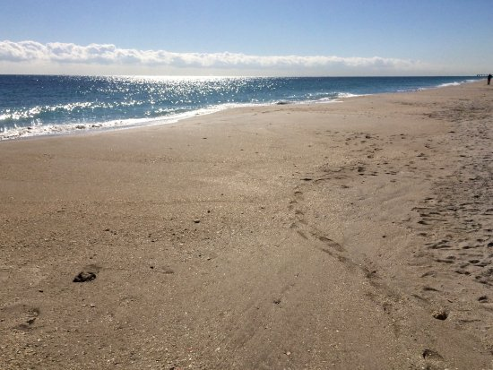 Dania Beach, فلوريدا: beautiful beach!
