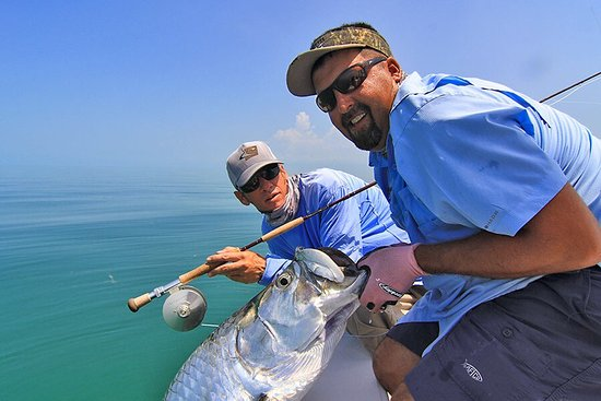 South Florida Fly Fishing Adventures: This is just a sample of what is available to us in the Miami area!!