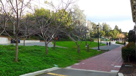 University of California, Berkeley: Das Gelände der Universität