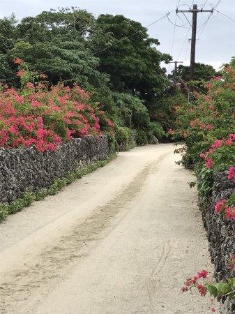 Taketomi-jima Taketomi-cho, اليابان: photo3.jpg