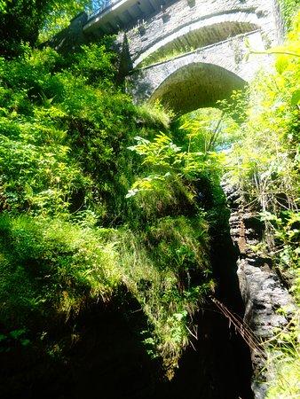 Devil's Bridge (Pontarfynach), UK: The Gorge