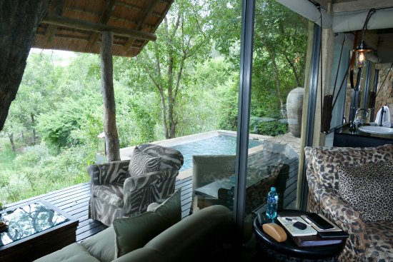 Singita Ebony Lodge: Wonderful
