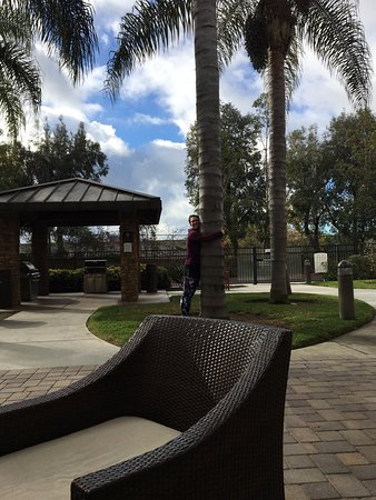 Staybridge Suites San Go Soro Mesa Casual Outdoor Lounging Area With Fire Pit And