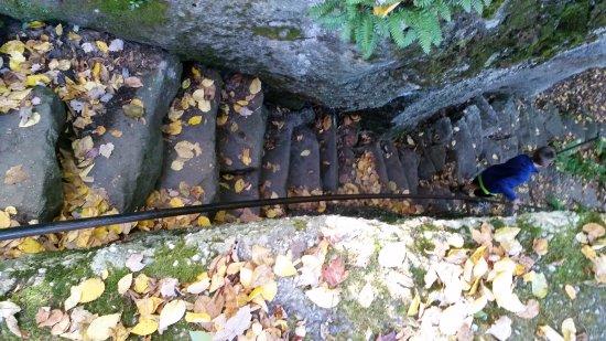 โอเลียน, นิวยอร์ก: Fall Colors