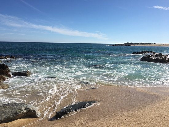 Hilton Los Cabos Beach & Golf Resort: Beautiful beach