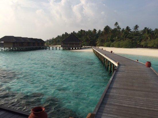 Meeru Island Resort & Spa : photo4.jpg
