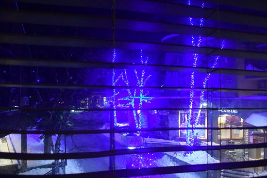Executive Inn At Whistler Village: View from the room at night