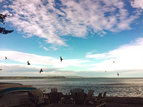 Eastsound, WA: Firepits, boats and birds