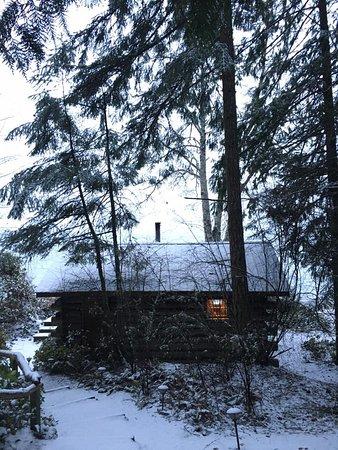 Eastsound, Etat de Washington : Winter snow dusting