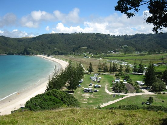 Matauri Bay Holiday Park: View of the camp and bay from the top of the hill where the Rainbow Warrior Lookout is.r