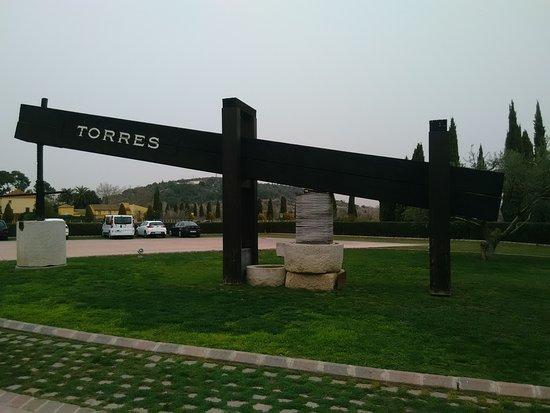 Province of Tarragona, Spain: Bodegas Miguel Torres