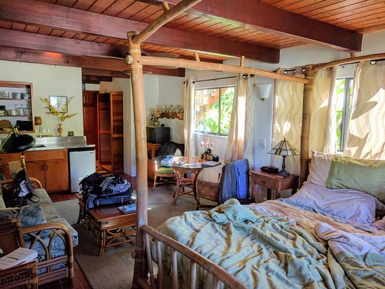 Aloha Guest House: Honu Room!