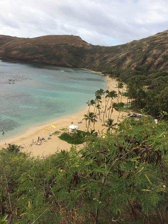 Fun Hawaii Travel - Day Tours: photo1.jpg