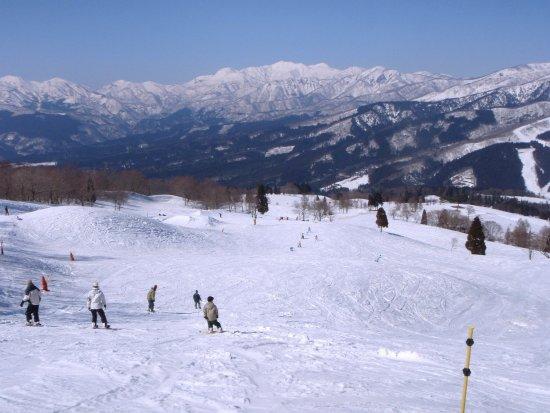 Snow Wave Park Shiratori Kogen: photo0.jpg