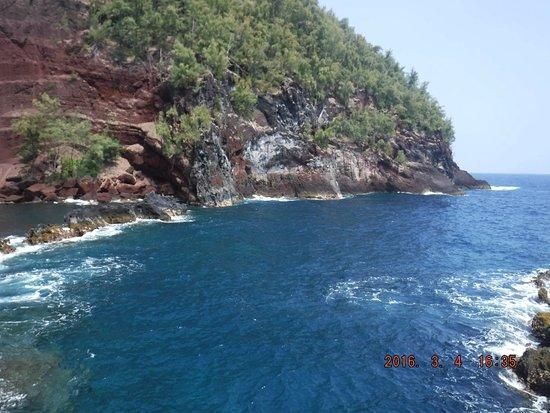 Maui Eco Retreat : amazing beach a drive away from the retreat