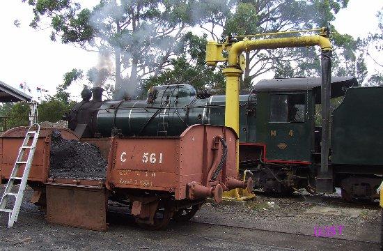Devonport, Australia: steaming M 4 for the duty