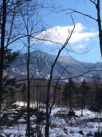 Jeffersonville, VT: Enjoyed our day of snowshoe trail walking! Great for beginners or experienced cross country skii