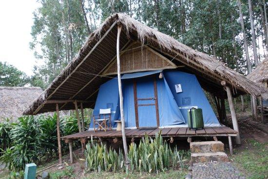 Eco-Omo Lodge: Tented camp