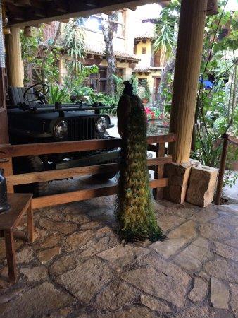 Hacienda Don Juan Hotel : photo4.jpg