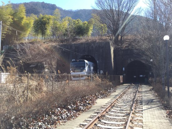 Koshu, Japon : 2016年4月からトンネル内部への立ち入りは漏水のため出来ません。 春には桜が見頃です。甚六桜。