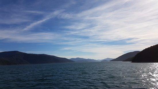 Picton, Nueva Zelanda: Wunderschöne Aussicht Malborough Sounds