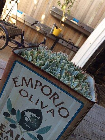 Sorrento, Australien: Old olive tins put to a good use.