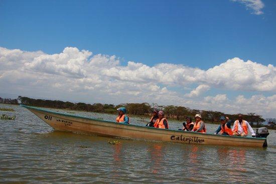 Rift Valley-provinsen, Kenya: 那瓦夏湖最棒的遊湖體驗!