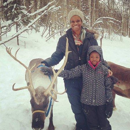 Running Reindeer Ranch : Winter Wonderland
