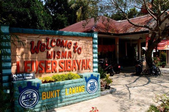 Wisma Leuser Sibayak