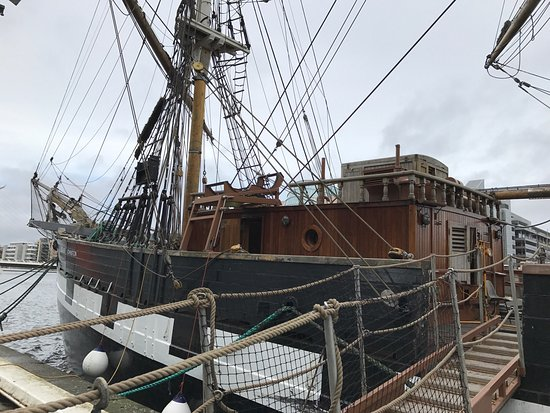 Jeanie Johnston Tall Ship and Famine Museum: photo4.jpg