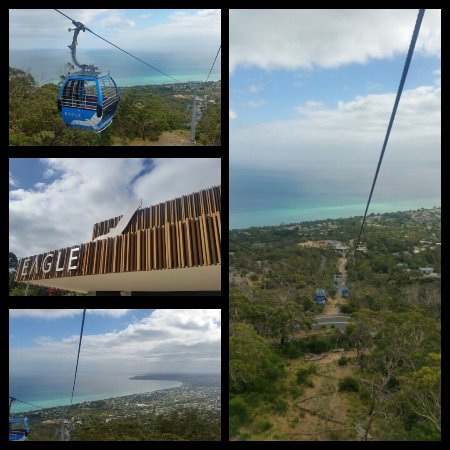 Arthurs Seat, Αυστραλία: The view when your on The Eagle.