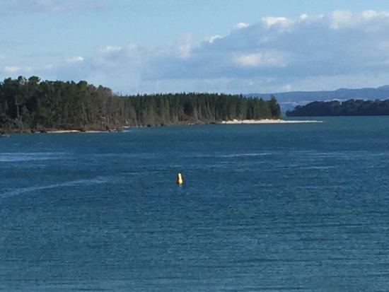 Waihi Beach, Nueva Zelanda: photo2.jpg