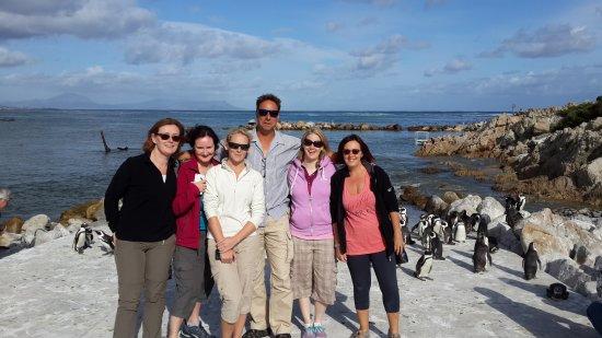 Camps Bay, Sør-Afrika: UK Gals, Penguin colony