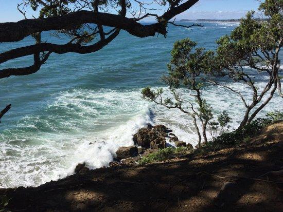Waihi Beach, Nueva Zelanda: photo0.jpg