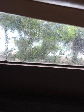 Viking Natures Resort: État de la robinetterie et propreté de la fenêtre dans la chambre Rimlay 2...