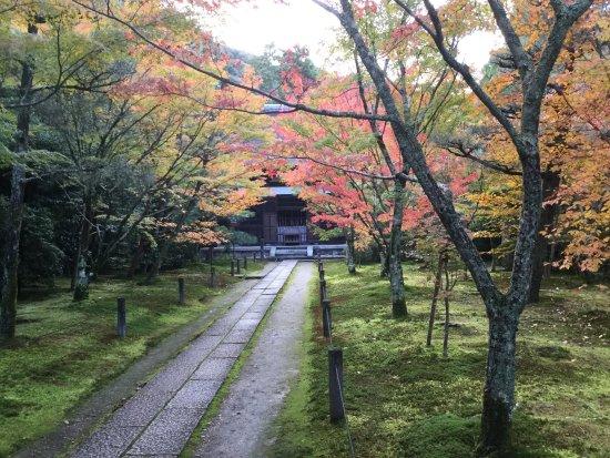 Shuonan Ikkyuji Temple : photo0.jpg