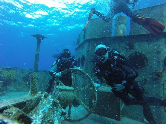 Kittiwake Shipwreck & Artificial Reef: Kittiwake shipwreck