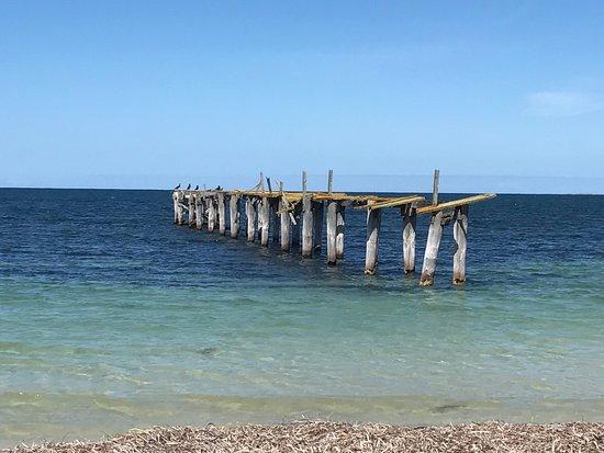 Orleans Bay Caravan Park: photo1.jpg