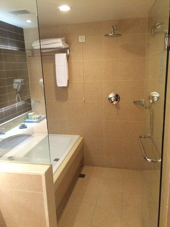 parsian azadi hotel bathroom with a wet room shower awesome