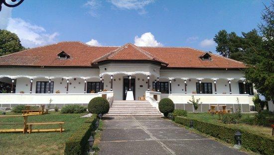 Prahova County, Rumänien: Urlateanu Mansion - Hallewood. Prahova wine road