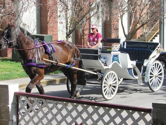 The Cedar House Inn: Arrange a carriage ride