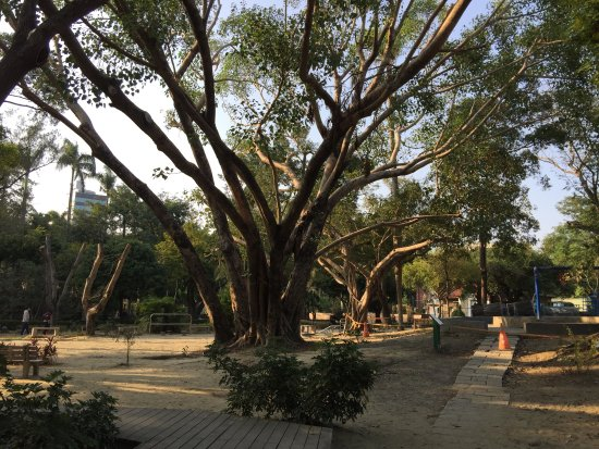 Tainan Park : photo0.jpg