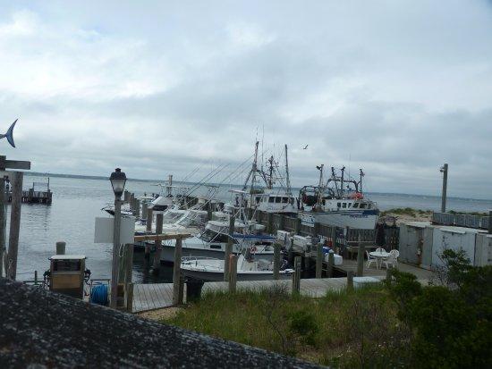 Hampton Bays, NY: boats