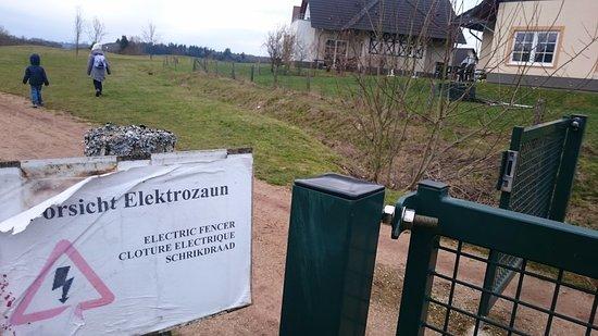 Ferienresort Cochem: Ohne Worte...